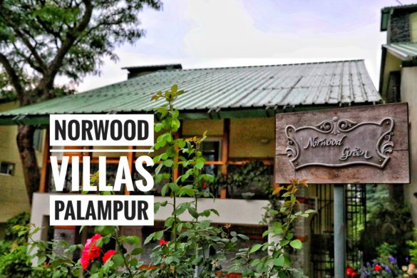 Norwood Villas